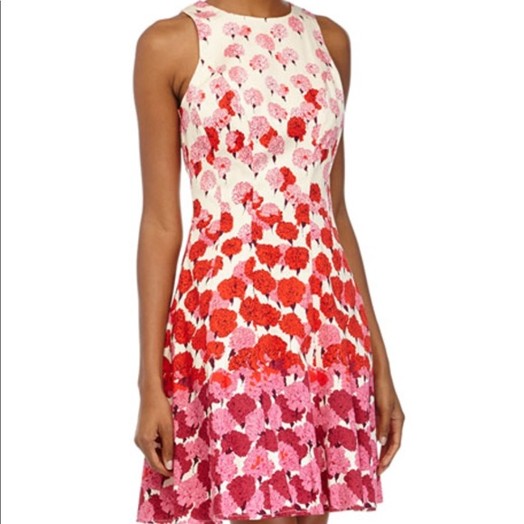 7f7f6cbe806c Maggy London Dresses & Skirts - Maggie London Fit & Flare Carnation Tank  Dress